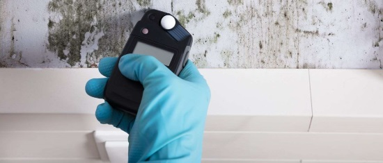 Commercial Mold Services