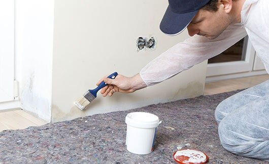Mold Remediation Services - Ocala FL